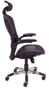 ErgoFlex Ergonomic Mesh Task Chair w/ Headrest - Side